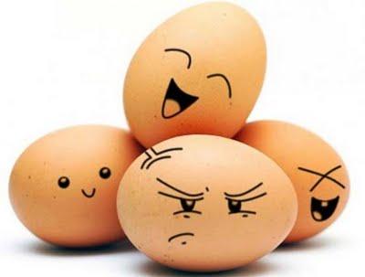 egg08