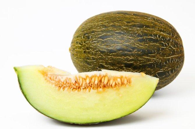 melon-ecoriginal1