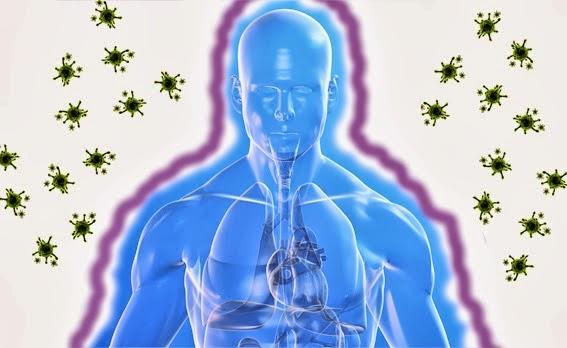 Sistema-inmunologico-2